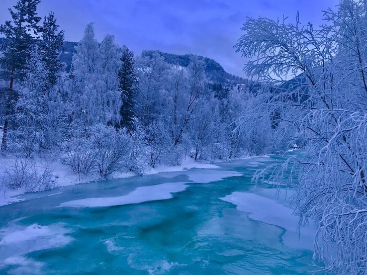 Rennende elv med isflak omgitt a hvite trær, en kald vinterdag.