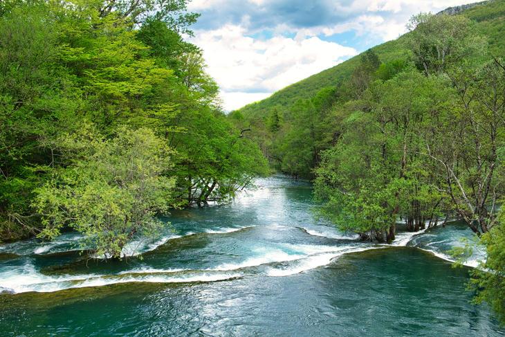 Rennende elv omgitt av grønne trær.