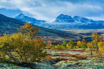 Rondane kledd i høstfarger