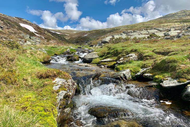 Det våres i Rondane - Eidefoss Strøm AS