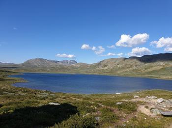 Lesjøen. Fotograf: Irene Fossøy.