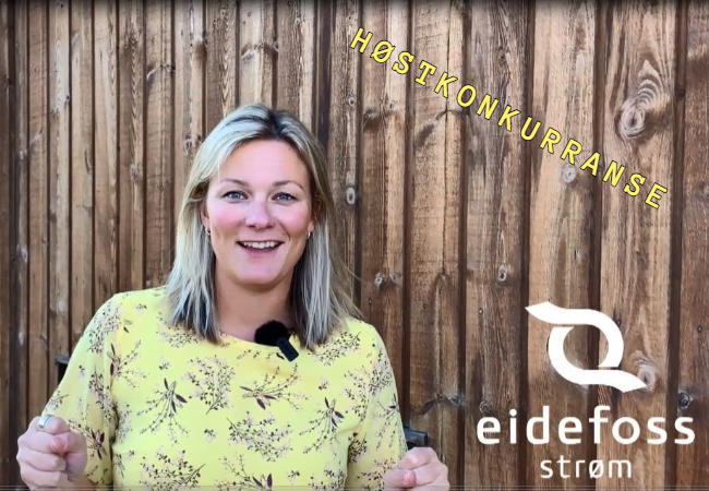 Ida i Eidefoss Strøm AS