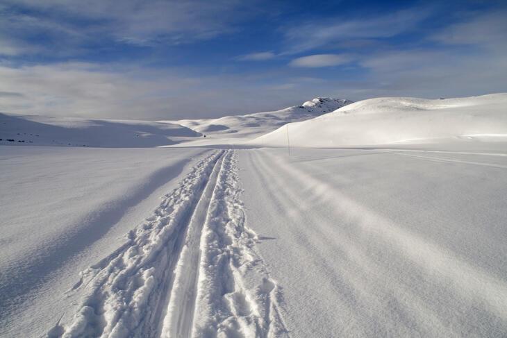 Skispor i vinterlandskap i Rondane.